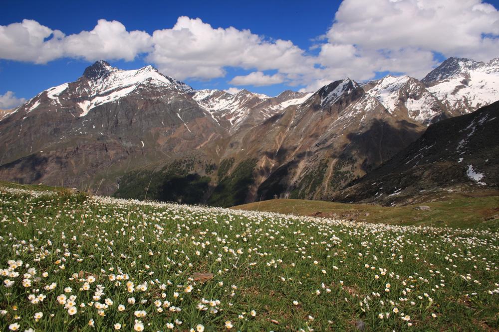 Paesaggio di montagna © Silvia Ghidotti