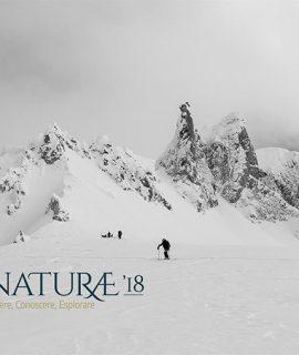 La natura, l'ambiente, la montagna e le esperienze delle persone tornano protagoniste con NATURAE a Montebelluna, Feltre, Pieve di Soligo e Valdobbiadene.