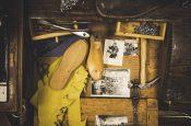 Dal 26 aprile al 25 maggio La Sportiva racconta l'evoluzione dell'alpinismo mondiale con una mostra temporanea aperta al pubblico al museo delle scienze di Trento.