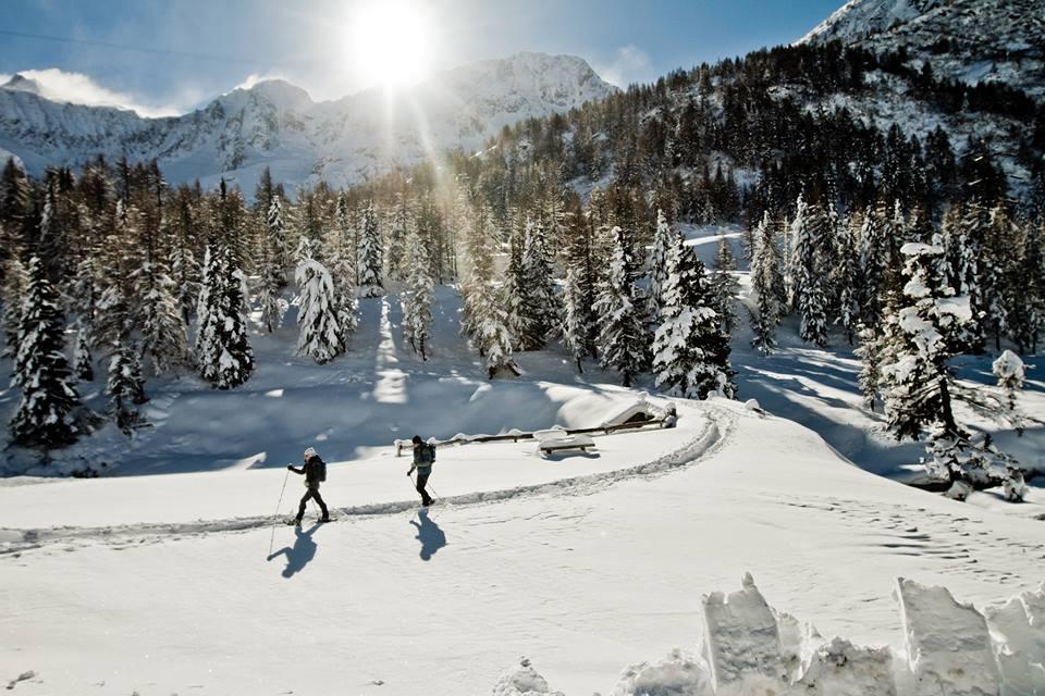 Ferrino produce le migliori tende, sacchi a pelo, zaini, giacche, pantaloni e abbigliamento per alpinismo, trekking, la montagna e outdoor.