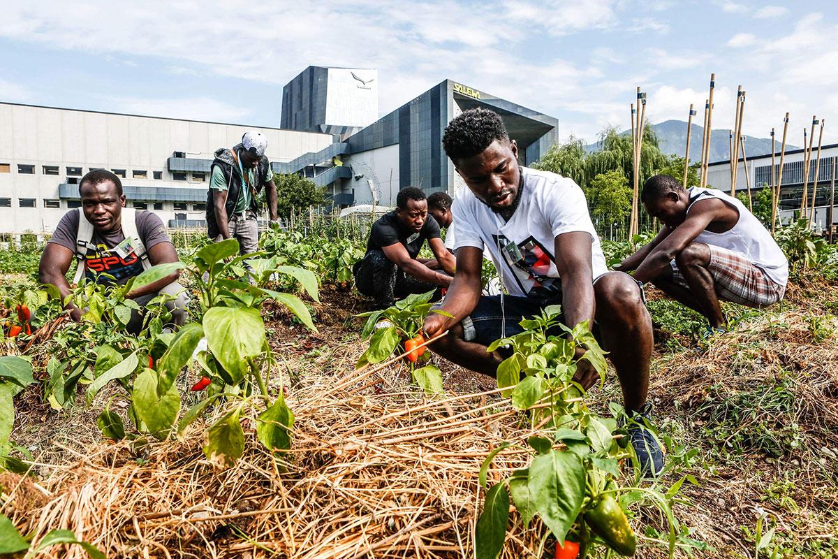 Orto Salewa: l'iniziativa di solidarietà sociale del Gruppo Oberalp in collaborazione con associazioni di volontariato locale, per offrire una possibilità di integrazione e formazione ai profughi residenti a Bolzano - foto: Matteo Groppo