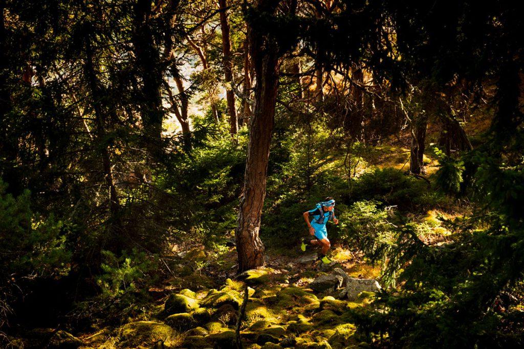 Alpine running su lunghi sentieri e con dislivelli impegnativi non saranno più un problema: i nuovi modelli SCARPA offrono una calzata avvolgente e protetta insieme a grip e tenuta su superfici difficili.