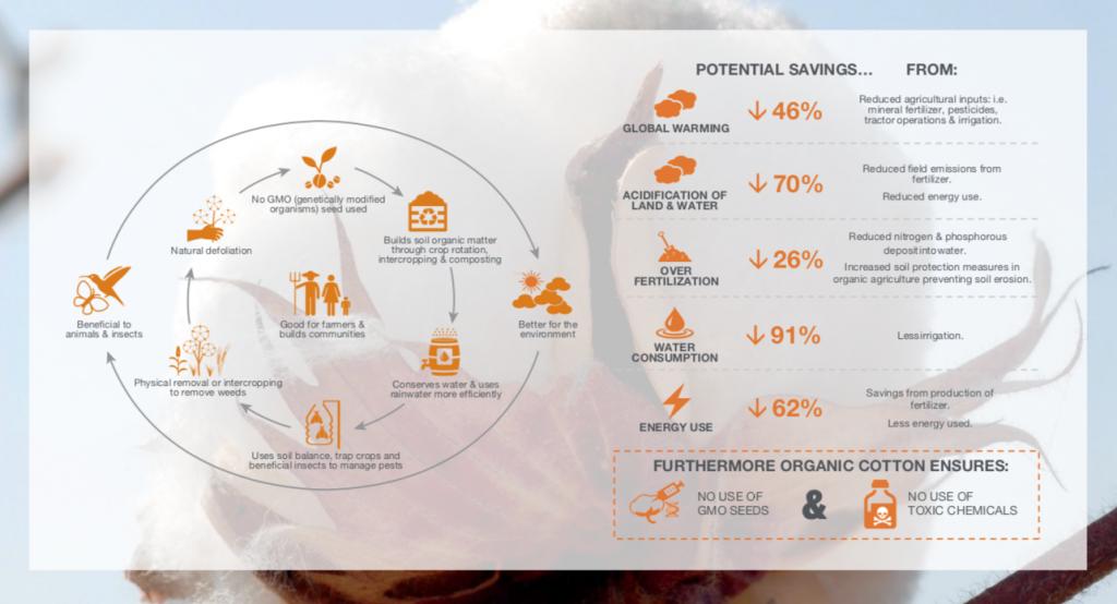 Mammut vuole offrire i migliori prodotti per l'Outdoor assumendosi una grande responsabilità sociale e lasciando la più piccola impronta ambientale possibile.