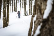 5 Tips by Ortovox for ski touring with a clear conscience, from mindful planning during a COVID winter to safe ski mountaineering.
