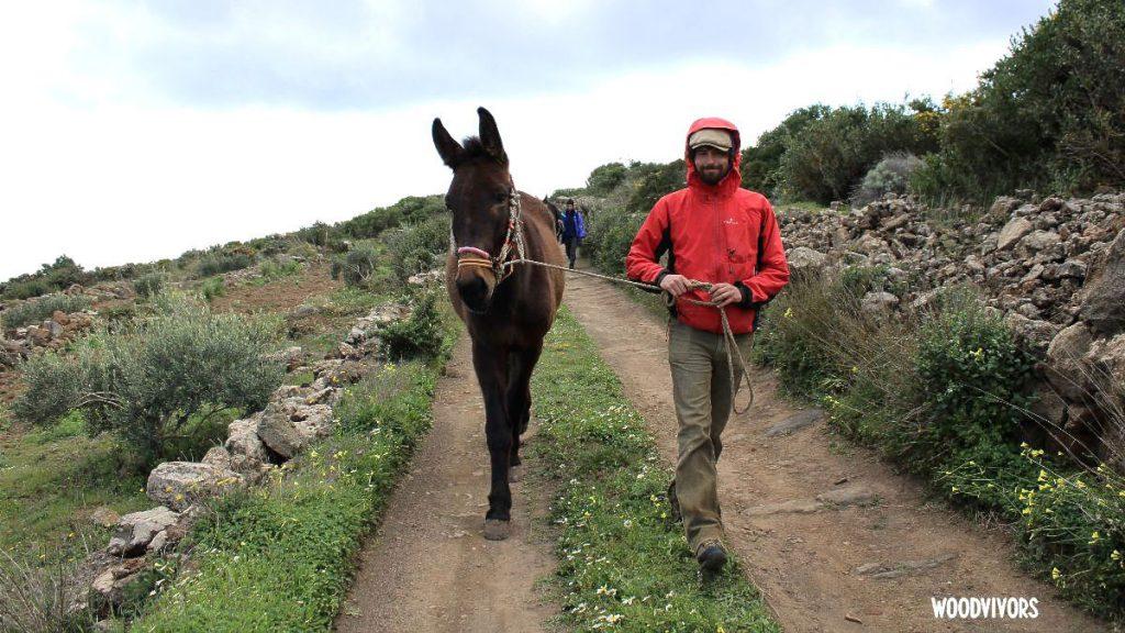 Sta per partire Woodvivors, il viaggio di Francesco Paolo Lanzino che, a dorso di mulo, vuole percorrere il Sentiero Italia CAI dall'isola di Pantelleria al Piemonte con l'intenzione di dare uno sguardo profondo alle tradizioni del nostro Paese arrivando alle radici di un futuro sostenibile